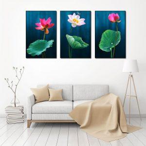 bộ 3 tranh hoa sen