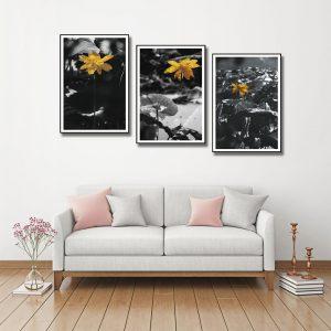 bộ tranh canvas hoa sen sắc vàng